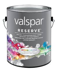 gallon of Valsoar paint